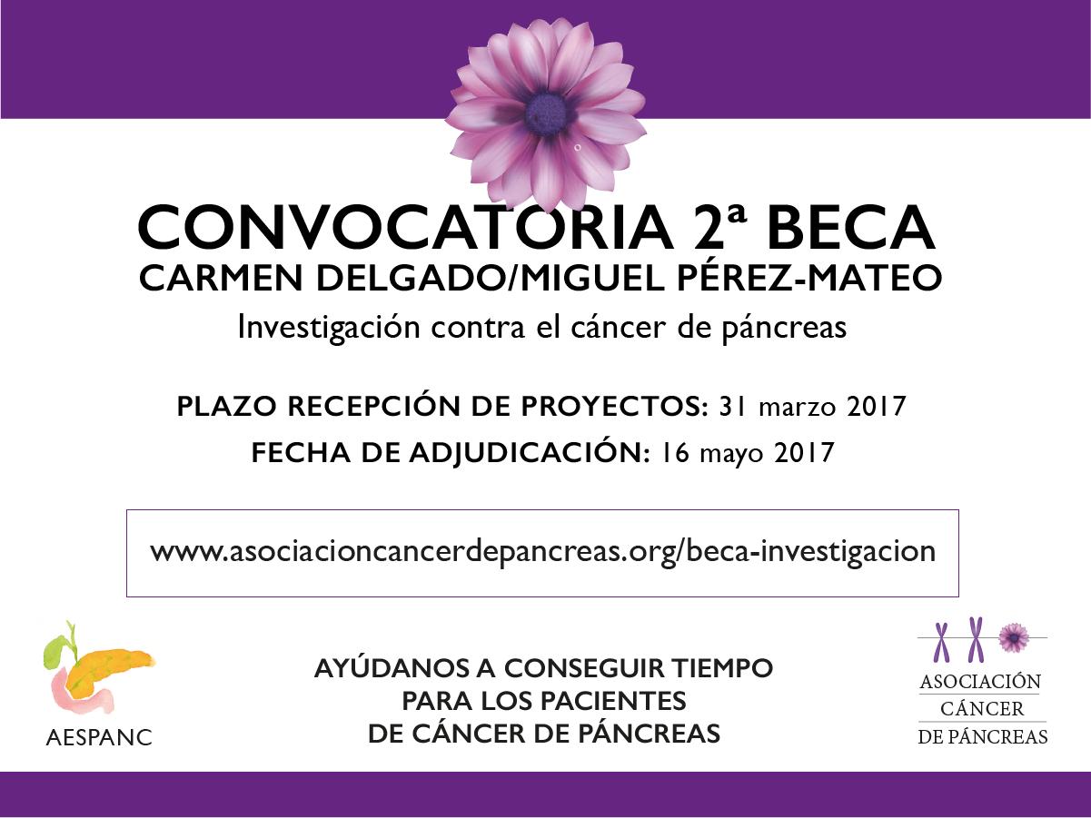 2_beca_cd_mpm_pancreas_-ad-1.png