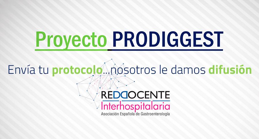 proyecto-prodiggest.jpg